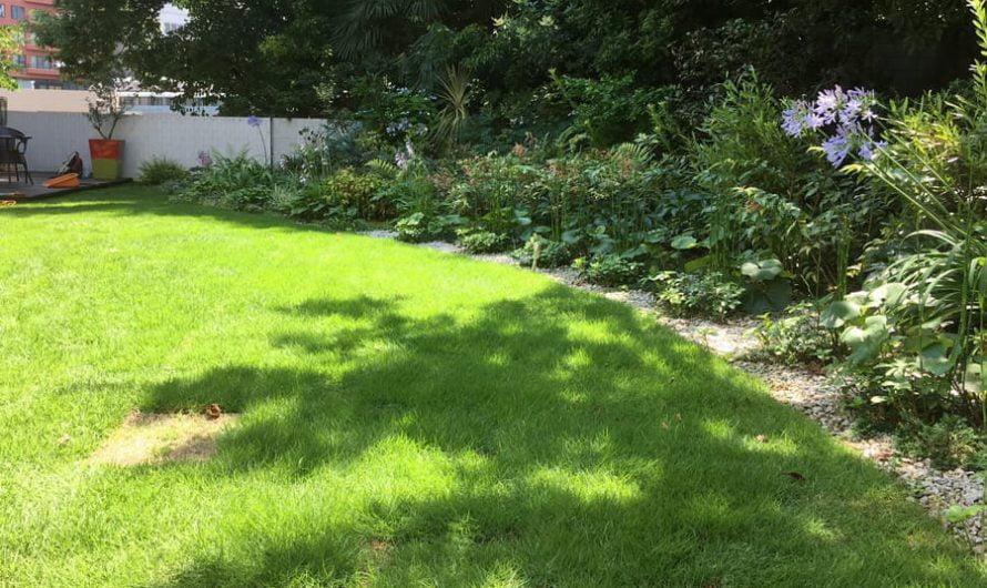 Works in the Garden in June