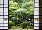 Funda-in temple garden in Kyoto