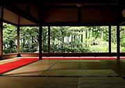 Hosen-in Temple Garden in Kyoto Ohara