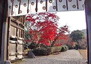 Kaiju-ji Japanese temple garden in Kyoto