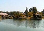 Korakuen Japanese Garden in Okayama