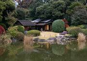 Tokyo National Museum Japanese garden
