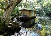 Nezu Museum Japanese Garden in Tokyo