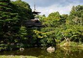 Ninna-ji Japanese temple garden in Kyoto