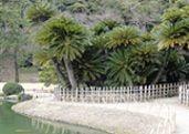 Ritsurin Garden in Takamatsu
