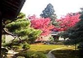 Rokuo-in Japanese Garden in Kyoto