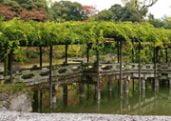 Sento Gosho in Kyoto Emperor Retreat