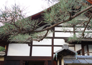 Shinjuku-an Japanese temple garden in Kyoto