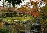 Taizo-in temple Japanese garden in Kyoto