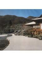 Half Transparent Japanese Garden Foil Winter