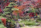 Famous Gardens in Other Regions