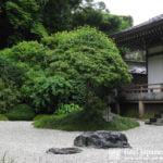 Japanese Garden History 2