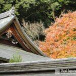 Daitoku-ji by Real Japanese Gardens
